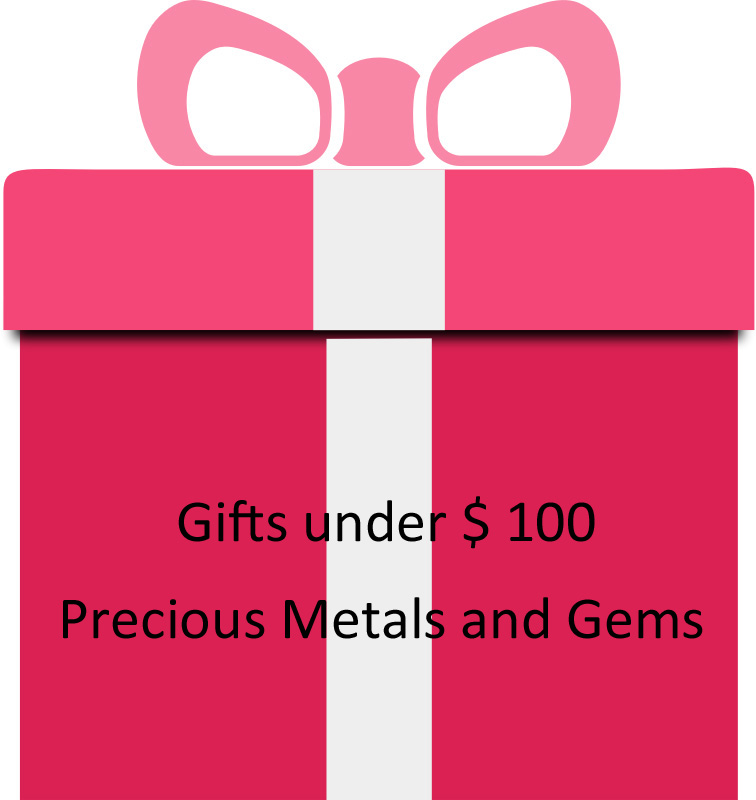 Gift Idea for under $ 100